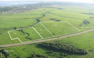 Порядок выкупа земельного участка из аренды в собственность в 2018 году