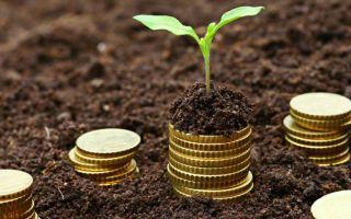 Сроки уплаты физическими лицами земельного налога в 2020 году