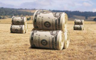 Процедура оформления земли в аренду у государства под бизнес