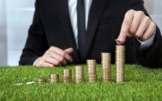 Порядок освобождения от уплаты земельного налога