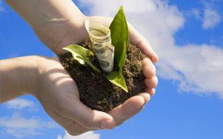 Порядок получения справки о кадастровой стоимости земельного участка