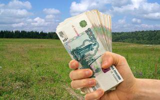 Процедура и нюансы продажи без посредников земельного участка: пошаговая инструкция
