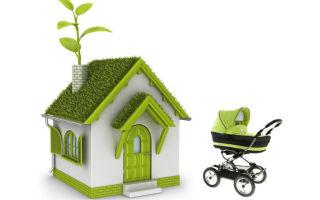 Риски продавца при продаже дома или квартиры по материнскому капиталу