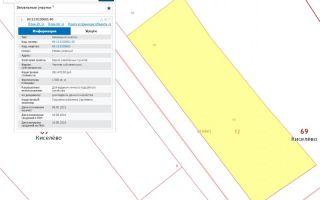 Порядок получения данных о межевании участка по кадастровому номеру