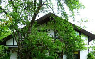 Нюансы получения налогового вычета при покупке частного дома с земельным участком