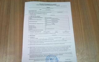 Процедура получения и стоимость кадастрового паспорт на дом
