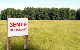 Продажа земельного участка: рекомендации и особенности проведения сделки