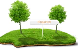 Порядок приобретения земли в частную собственность у государства