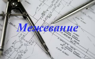 Межевание земельного участка в СНТ: необходимые документы