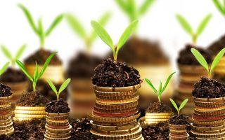 Процедура покупки участка земли у администрации по кадастровой стоимости