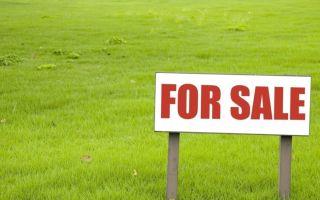 Продажа земельного участка, находящегося в собственности: процедура и важные нюансы