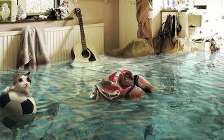 Порядок действий при затоплении соседями сверху: оценка ущерба, получение компенсации