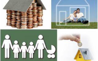 Особенности программ по улучшению жилищных условий многодетным семьям