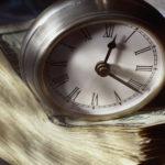 Стоимость и сроки оформления договора дарения