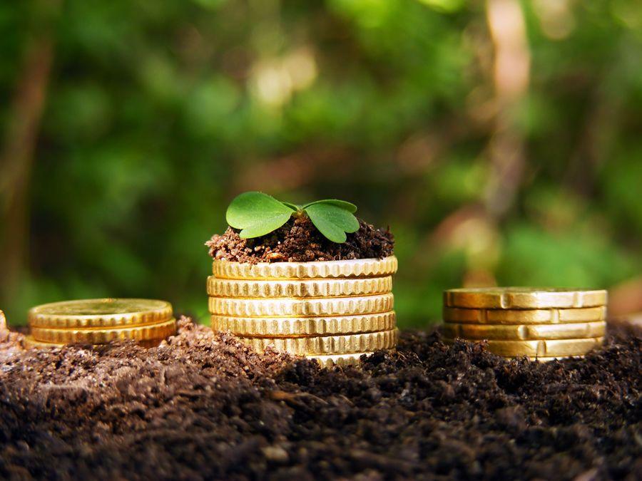 Как через Сбербанк онлайн оплатить земельный налог