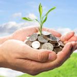 Стоимость приватизации земельного участка