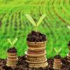Порядок и примеры расчета налога на землю