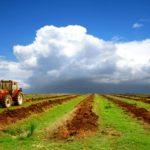 Земля сельхозназначения может быть продана только для ведения сельскохозяйственной деятельности