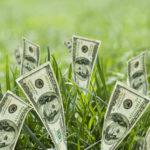 Стоимость пая земли