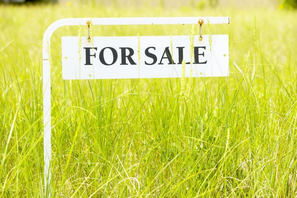 Купить землю