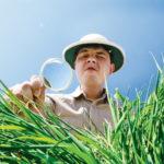Изображение - Порядок проверки земельного участка при покупке magnifying-glass-150x150