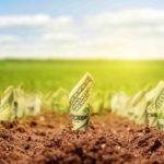 Сколько стоит земельный участок