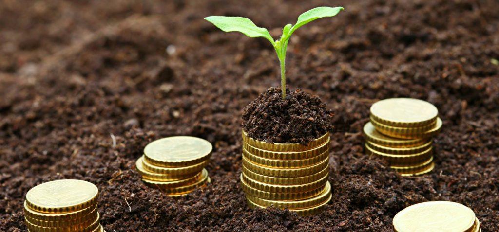 Уплата земельного налога для физических лиц