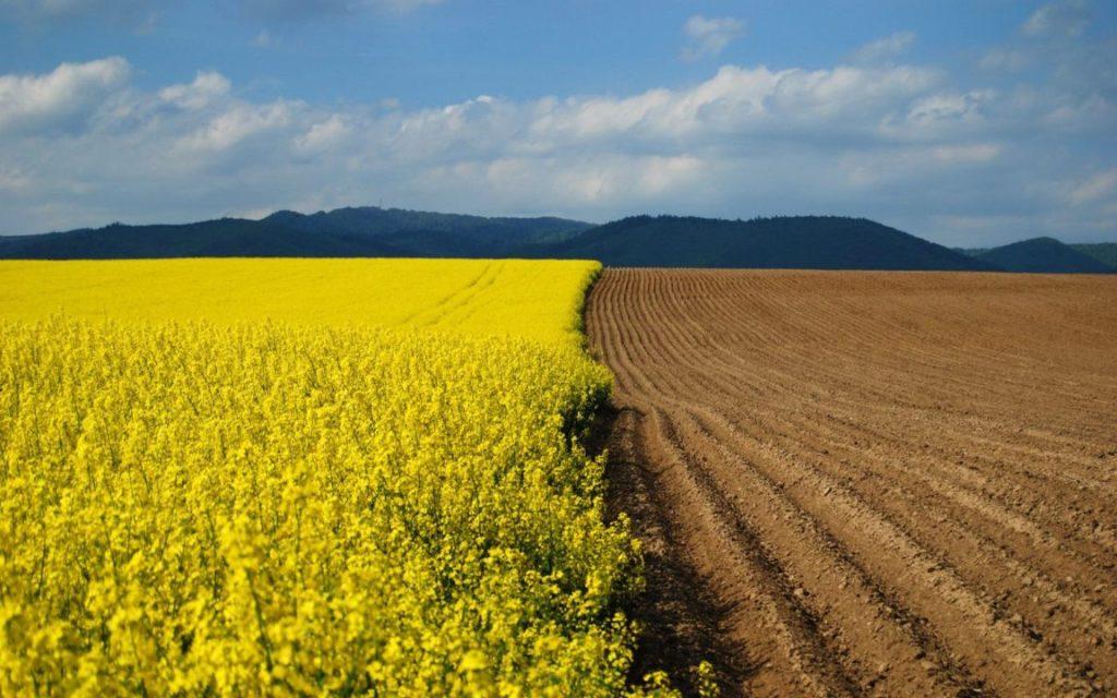 Перевод земли из сельхозназначения в ИЖС